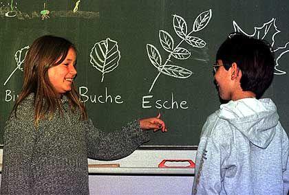 Migranten-Kinder: Massive Sprachprobleme