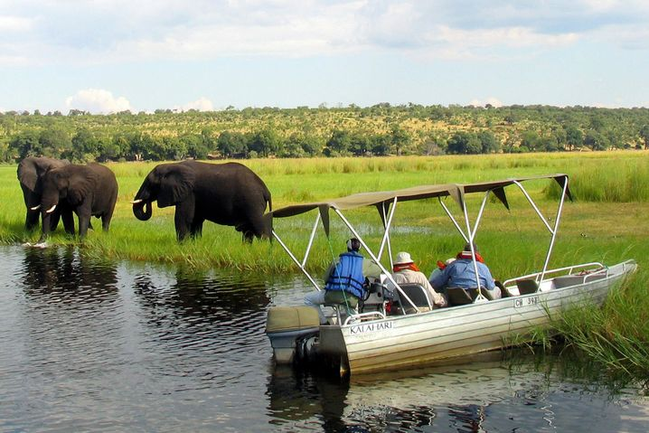 Safari am Chobe-Fluss