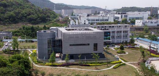 Coronavirus: Wuhan-Labor weist Behauptungen über Virus zurück