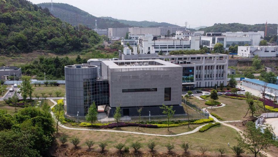 P4-Labor des Wuhan-Instituts für Virologie: Kampf um die Wahrheit