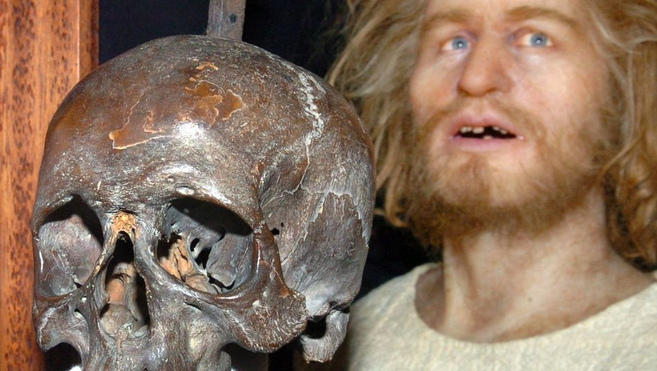 The missing skull, believed to have belonged to legendary pirate Klaus Störtebeker, and a life-size wax figure of the buccaneer at Hamburg's history museum before the theft.