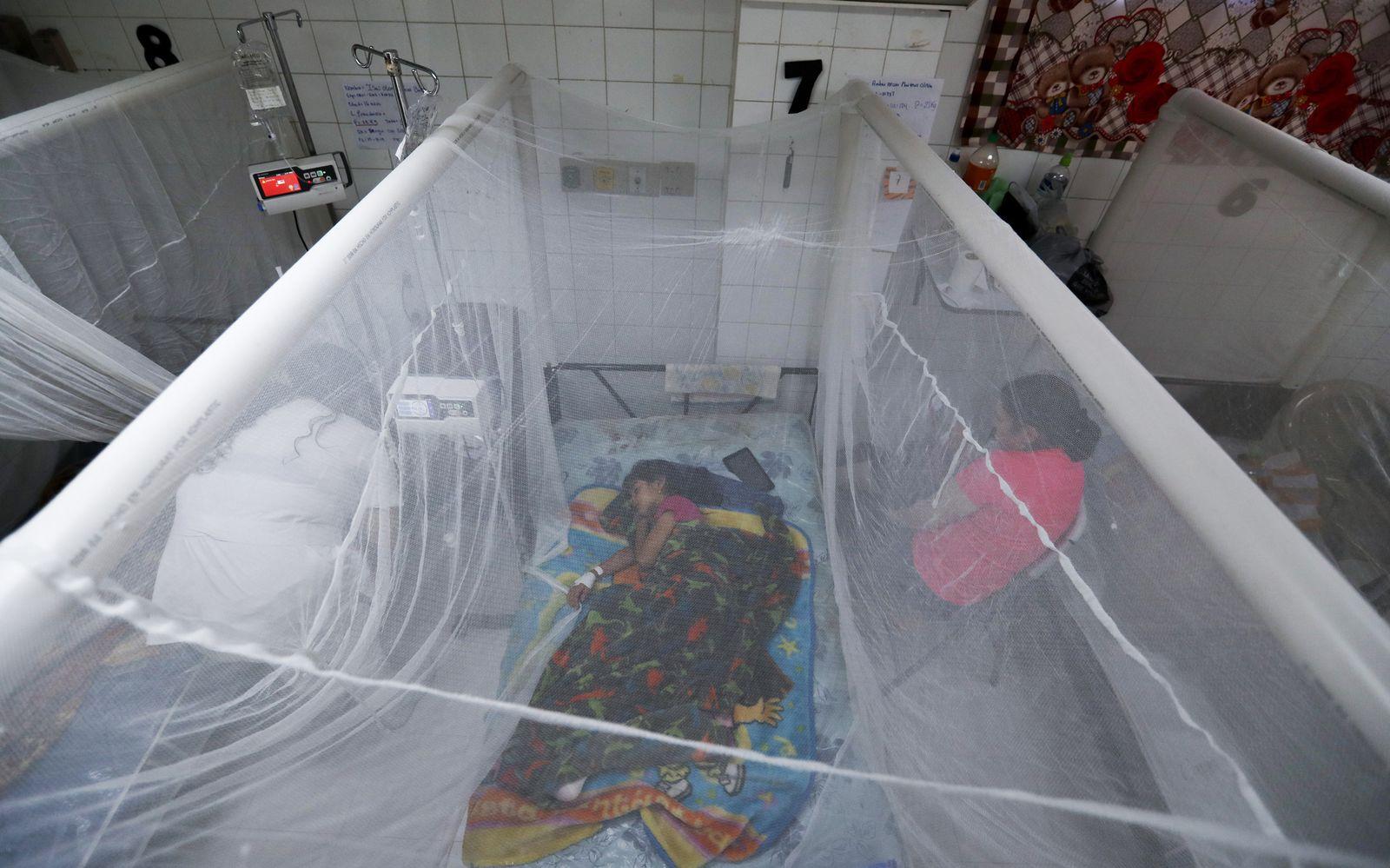 Dengue-Fieber in Mittelamerika