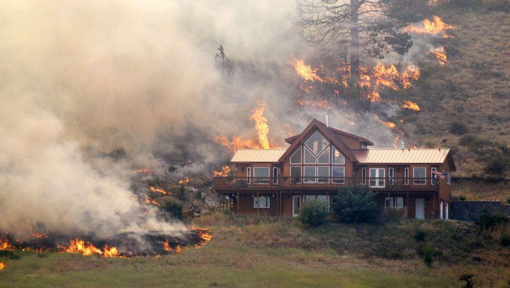 Waldbrände in den USA: Von Flammen zerfressen