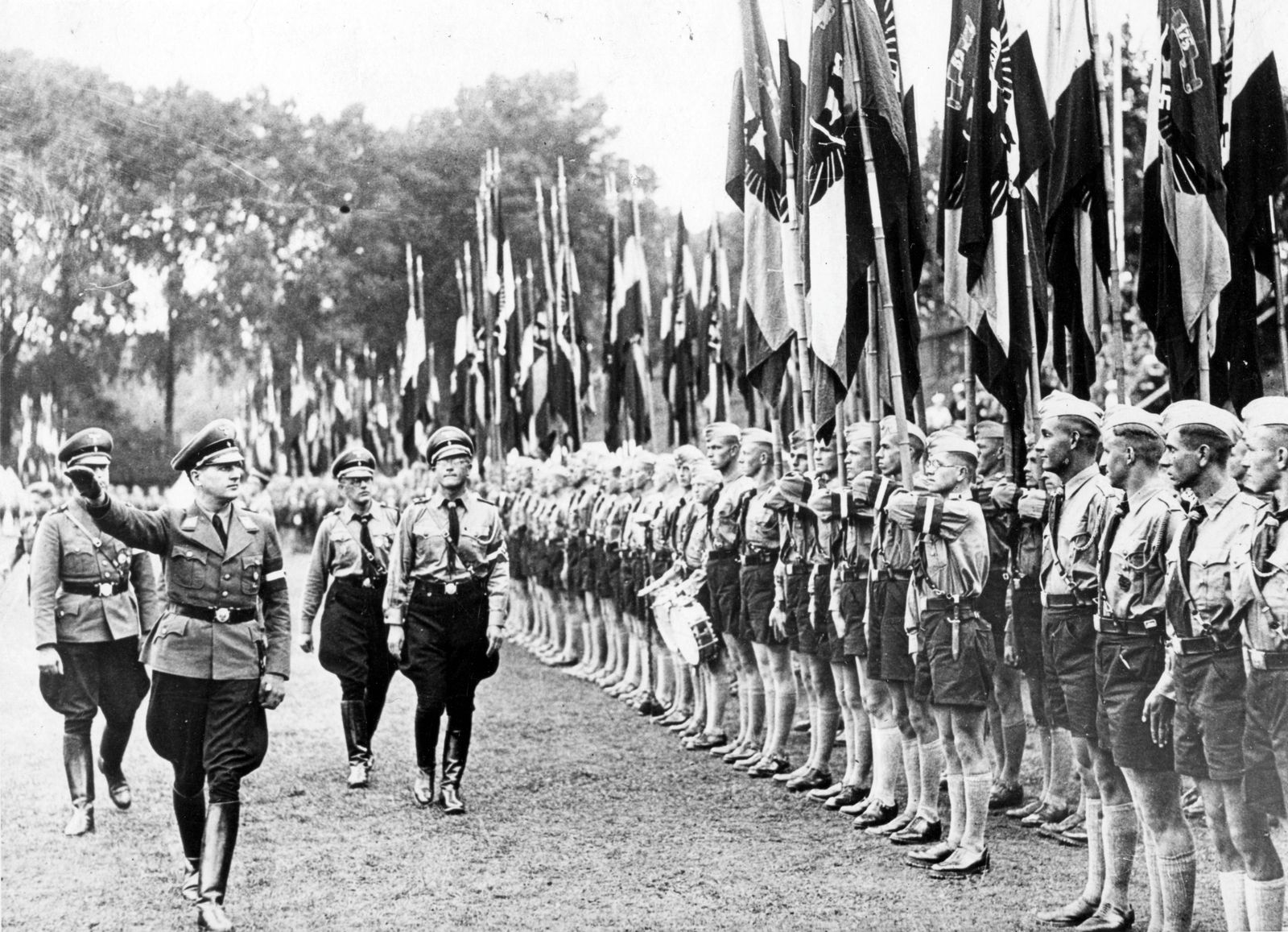 Hilter Youth Flag Review