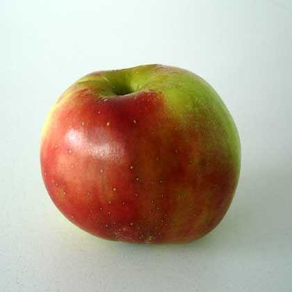 Kampf dem Schoko-Konsum: Niedersachsens Schüler sollen künftig jeden Tag einen Apfel bekommen