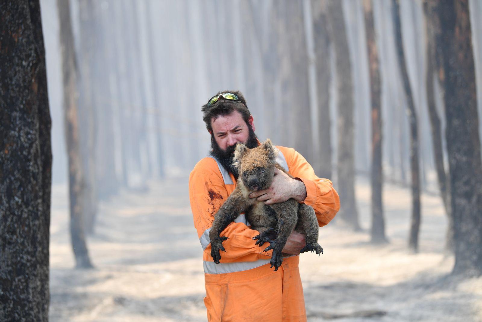 Buschbrände in Australien