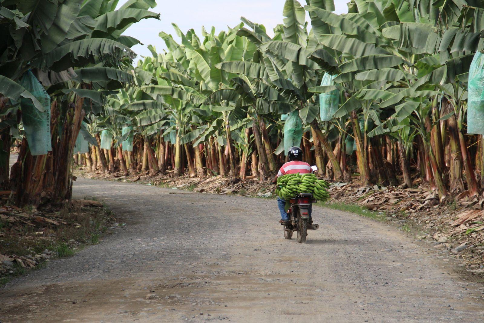 EINMALIGE VERWENDUNG Oxfam