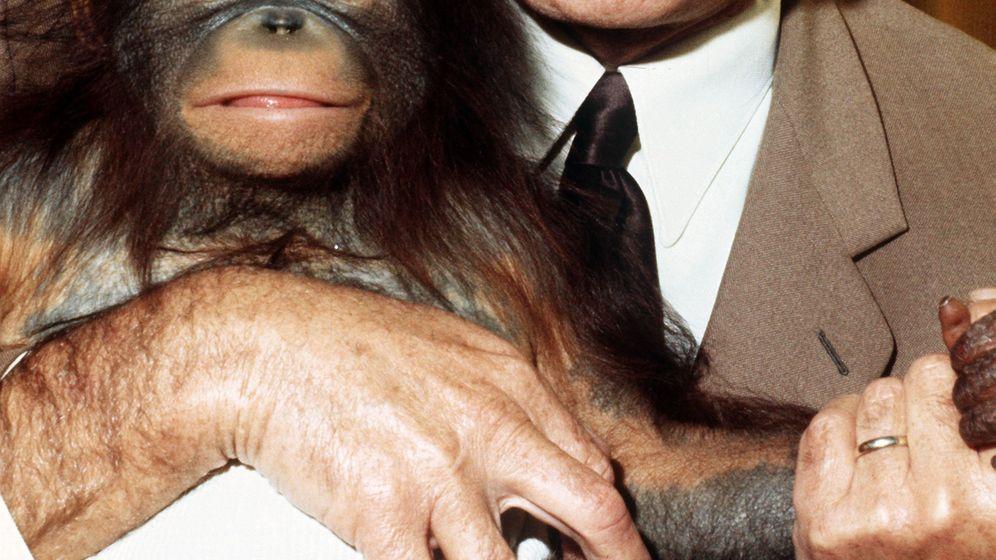 Bernhard Grzimek: Ein Herz für wilde Tiere