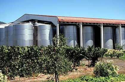 Der Wein reift nicht ausschließlich in Stahltanks, sondern auch auf traditionelle Weise in Holzfässern