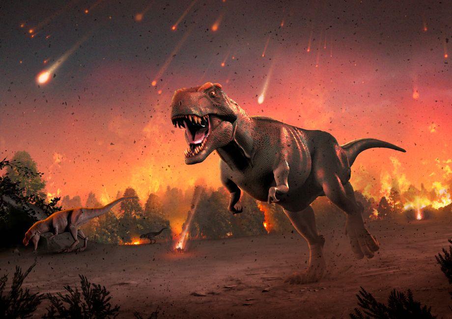 Zur Zeit der Dinosaurier wurde die Erde in der Nähe des heutigen Mexiko von einem riesigen Meteoriten getroffen. Der katastrophale Einschlag führte zu einem Massensterben.