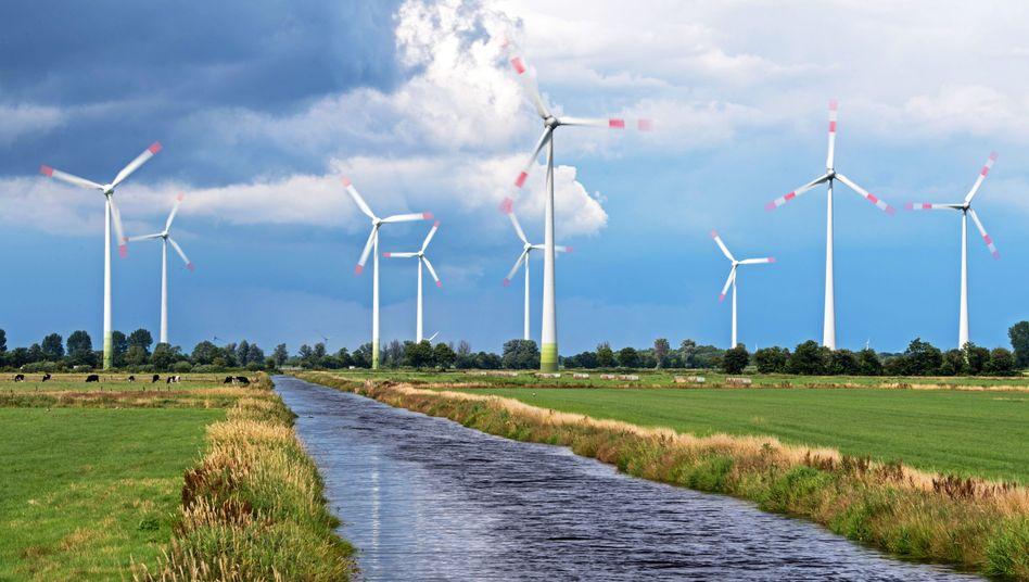 Windparkin Niedersachsen