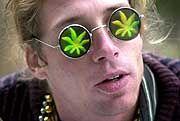 Cannabis-Freund: Hört das Gras wachsen