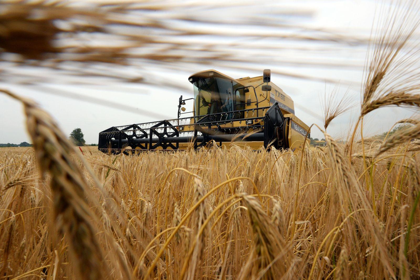 Getreideernte / Mähdrescher / EU-Agrarsubventionen / Agrarbetriebe
