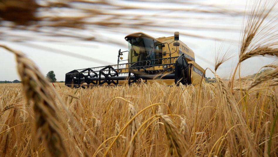 Getreideproduktion: Weltweit 30 Millionen Tonnen mehr verbraucht als geerntet