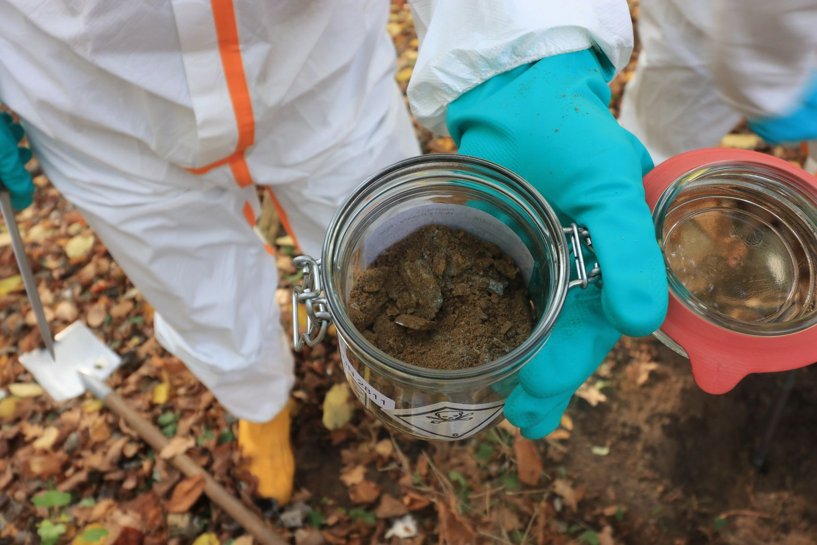 Hohe Dioxinwerte im Naturschutzgebiet Boberger Niederung