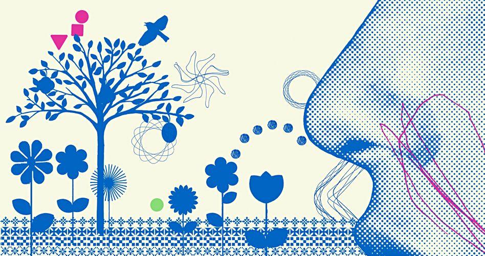 Blütenstaub und Pollenflug: Antihistaminika helfen gegen Heuschnupfen