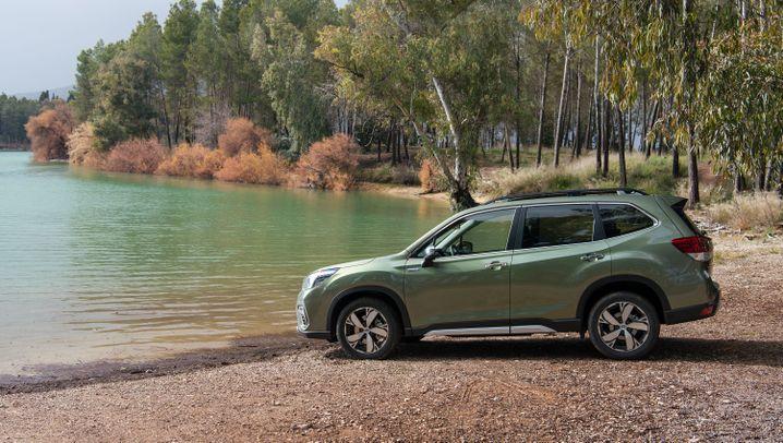 Autogramm Subaru Forester: Hybridantrieb im Rustikal-Kombi