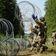 Lettland ruft wegen Migranten aus Belarus Ausnahmezustand aus