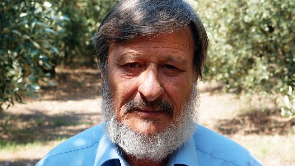 """""""I love nature, the trees and the olives, but I must be a total fool,"""" says farmer Georgois Nikolaou."""