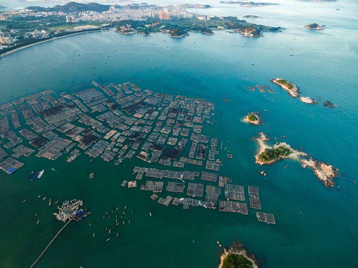 Aquakulturbetriebe in Chinas Provinz Fujian