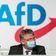 Meuthen-Getreue wollen Parteitagsmehrheit ignorieren