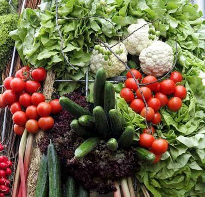Gemüseparadies: Schmälert Klugheit den Appetit auf Fleisch?