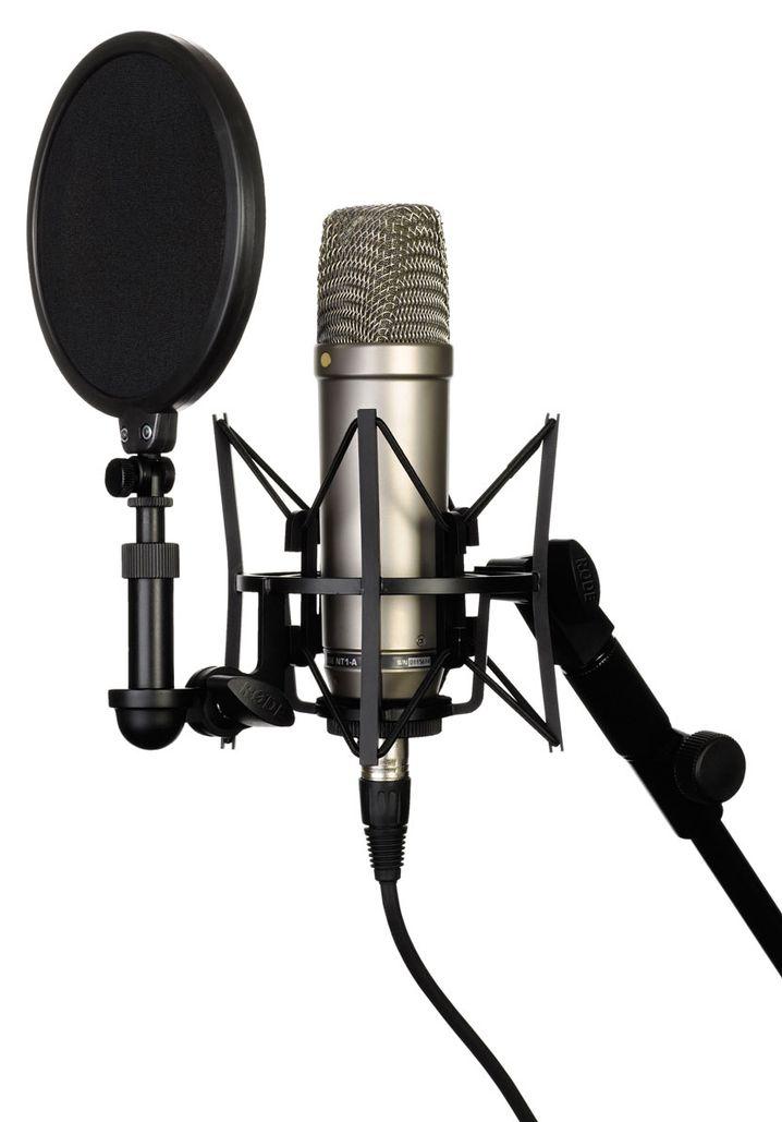 Mikrofon: Das Kernstück des Studios, wenn man Gesang und Instrumente aufnimmt