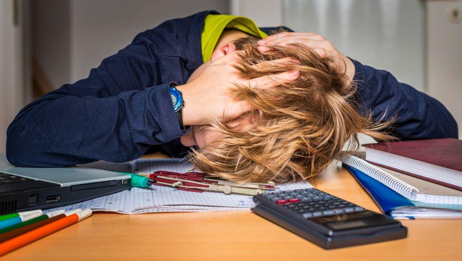 Was so munter und modern Homeschooling heißt, ist mitunter zum Verzweifeln