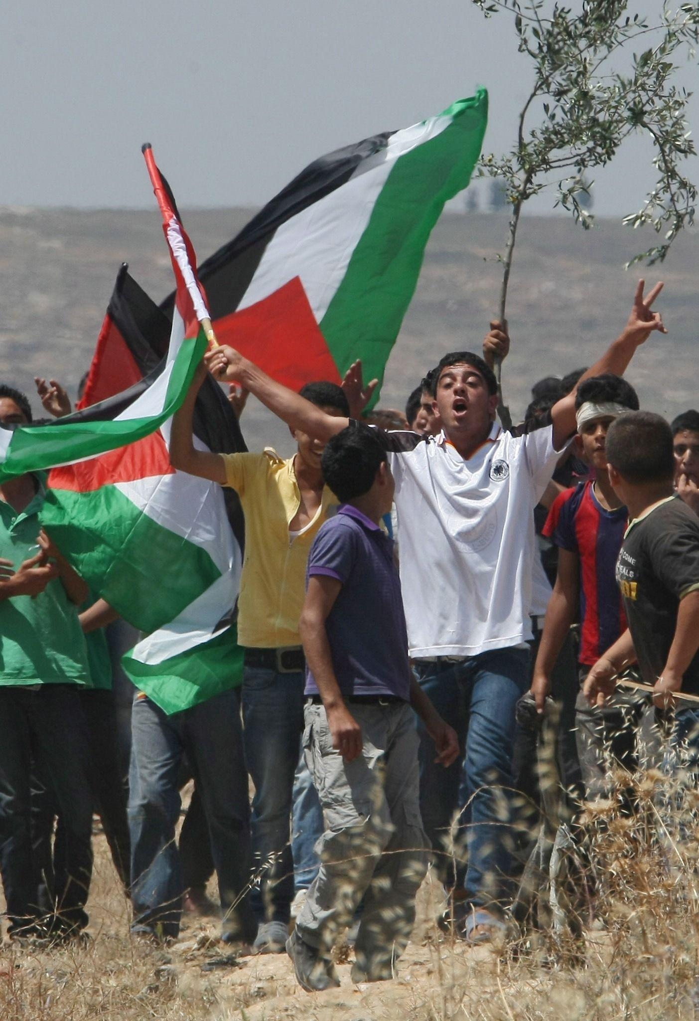 palästinenser schwenken fahnen