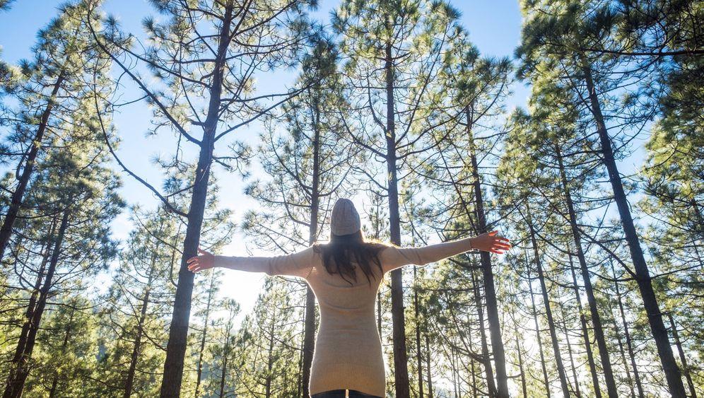 """Waldbaden: """"Die Sinne sind der Schlüssel"""""""