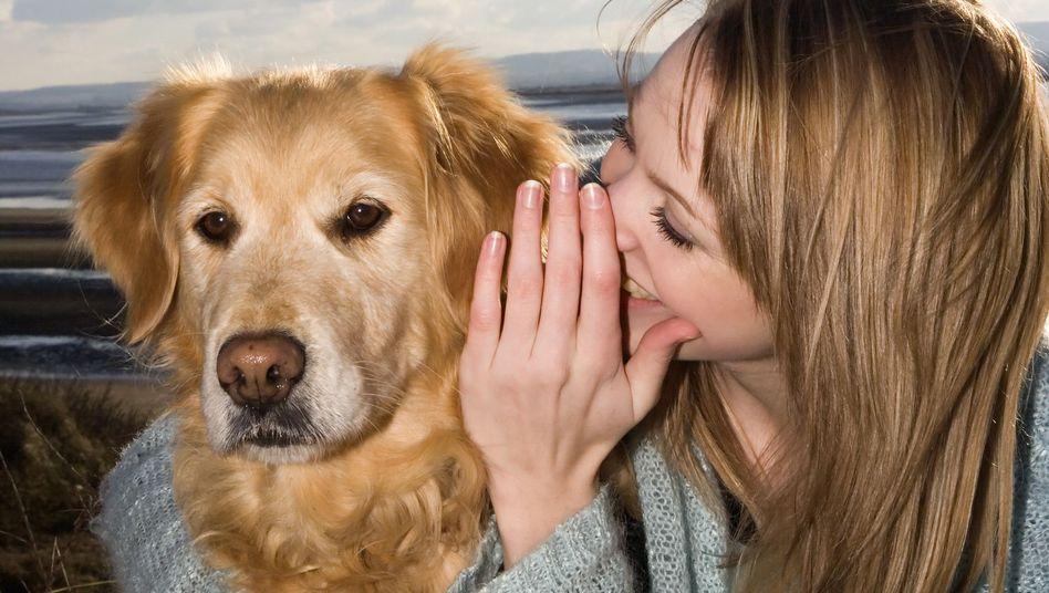 Beste Freunde: Hund mit Mensch
