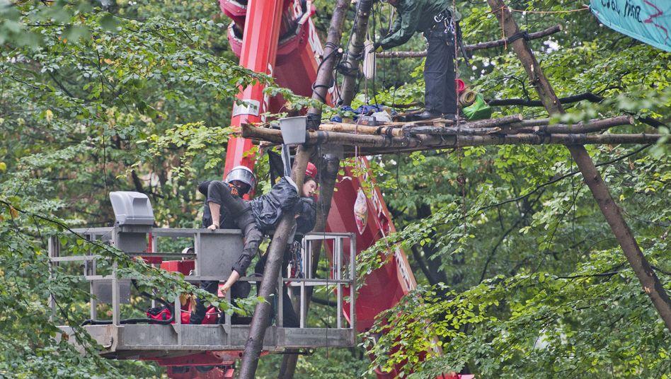 Polizei holt Aktivistin aus einem Baum im Hambacher Forst
