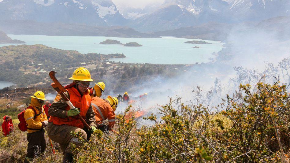 Brandbekämpfer im Einsatz: Über 700 Helfer brachten das Feuer unter Kontrolle.