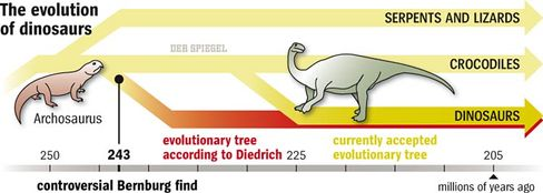 Graphic: The evolution of dinosaurs