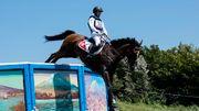Schweizer Pferd nach Verletzung eingeschläfert
