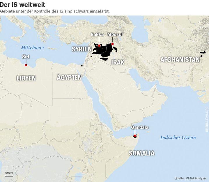 Der IS weltweit