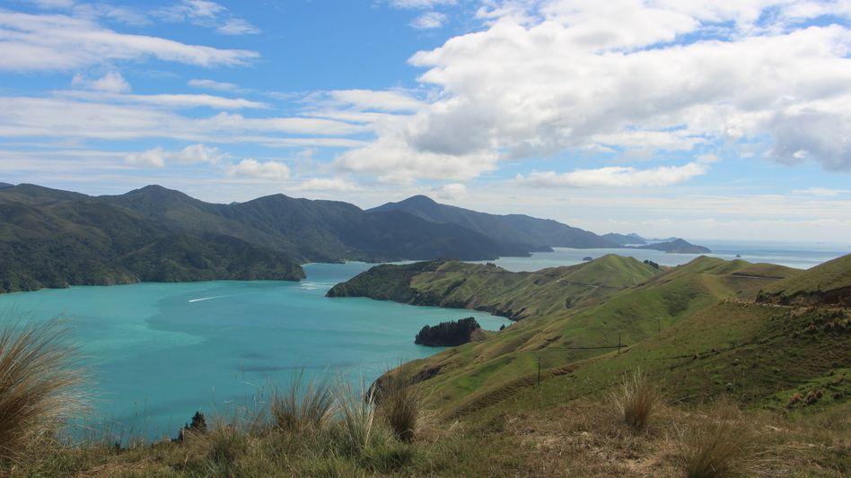 Marlborough Sounds auf Neuseelands Südinsel
