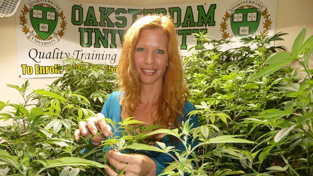 Cannabis-Uni in Kalifornien: Milliardengeschäft im Golden State