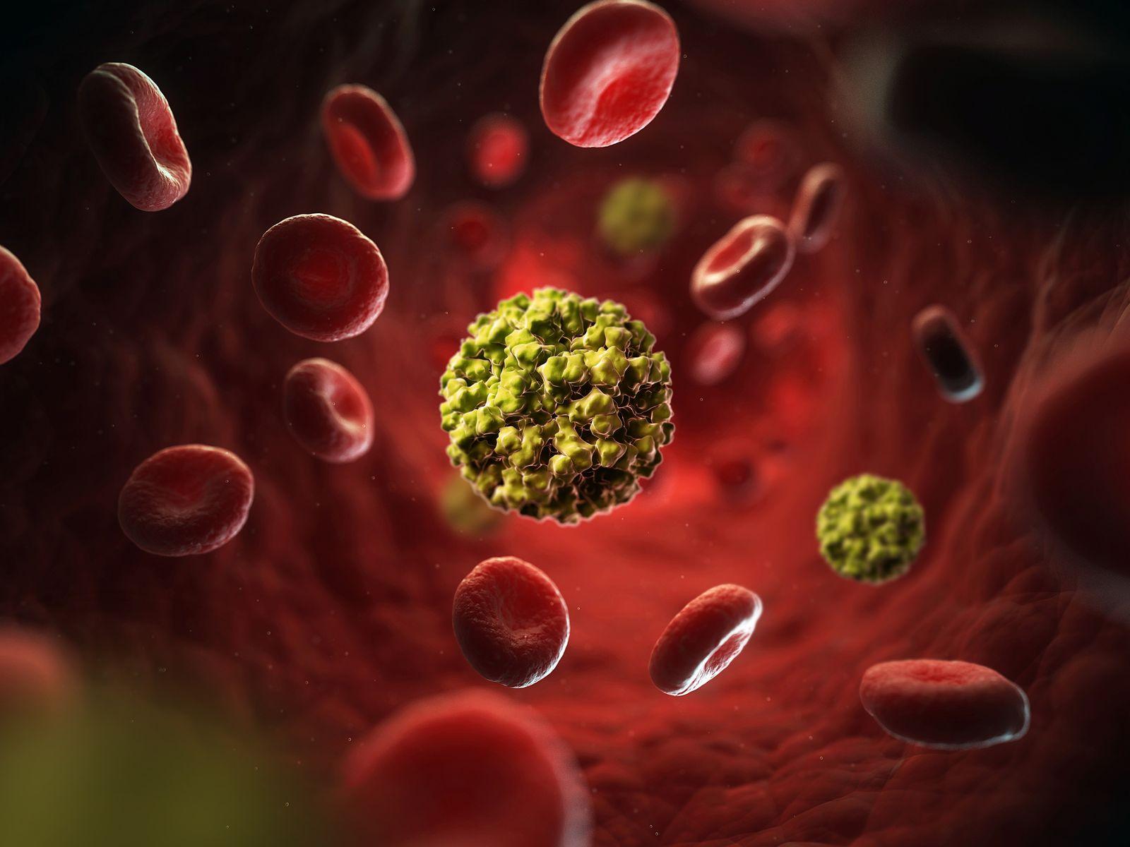 NICHT MEHR VERWENDEN! - Norovirus / GESUNDHEIT