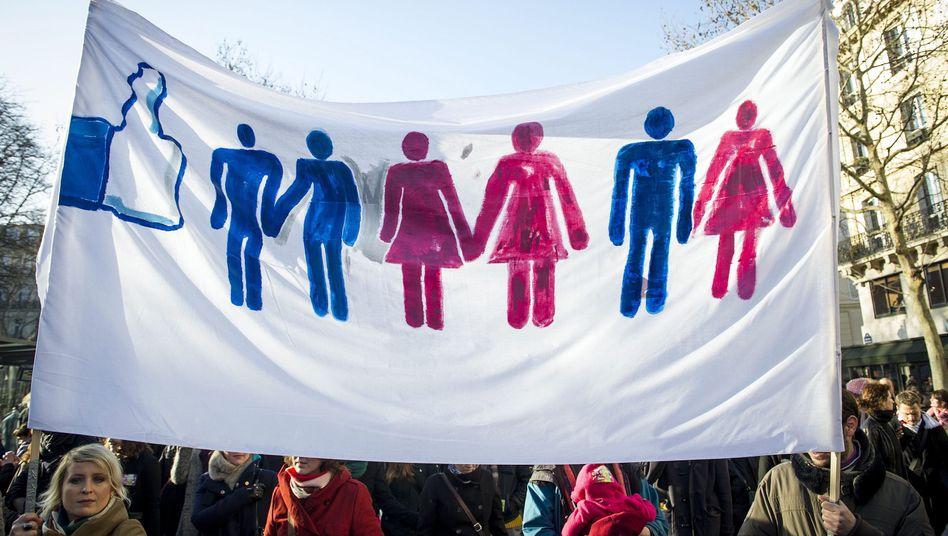 Protestplakat für Homo-Ehe (in Frankreich): Druck vom Verfassungsgericht