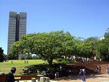 University of Port Elizabeth: Viel Auswahl für Studenten