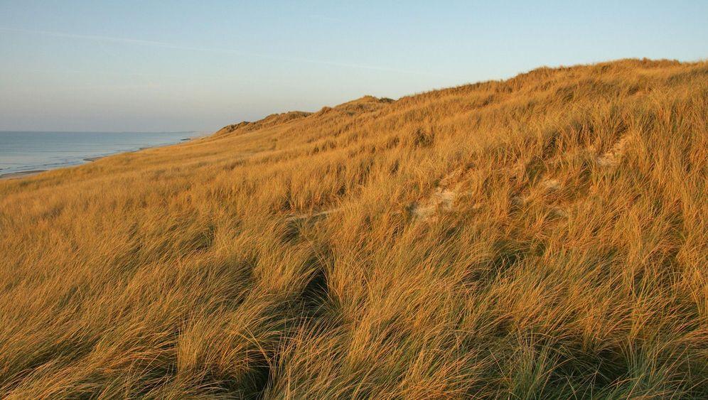Nebensaison in Dänemark: Die Einsamkeit der Nordseeküste