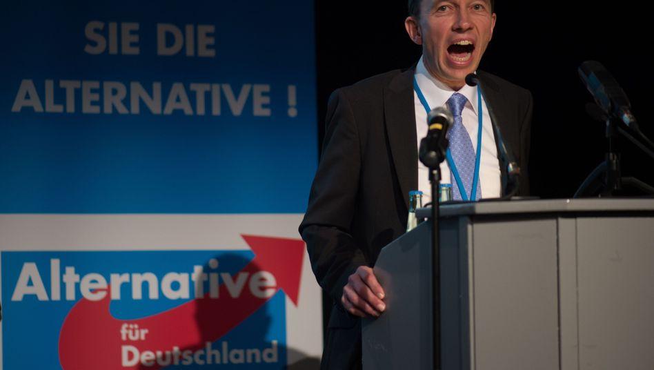 AfD-Chef Lucke: Die Anti-Euro-Partei will in den Bundestag
