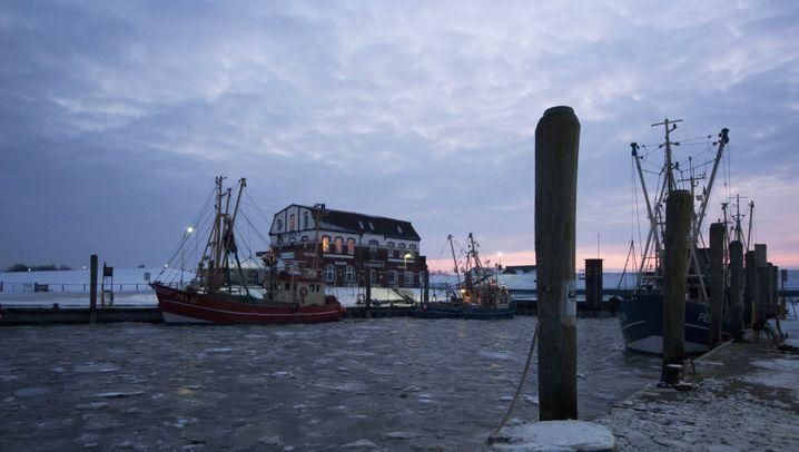 Biikebrennen an der Nordsee: Feuerspektakel im Winter
