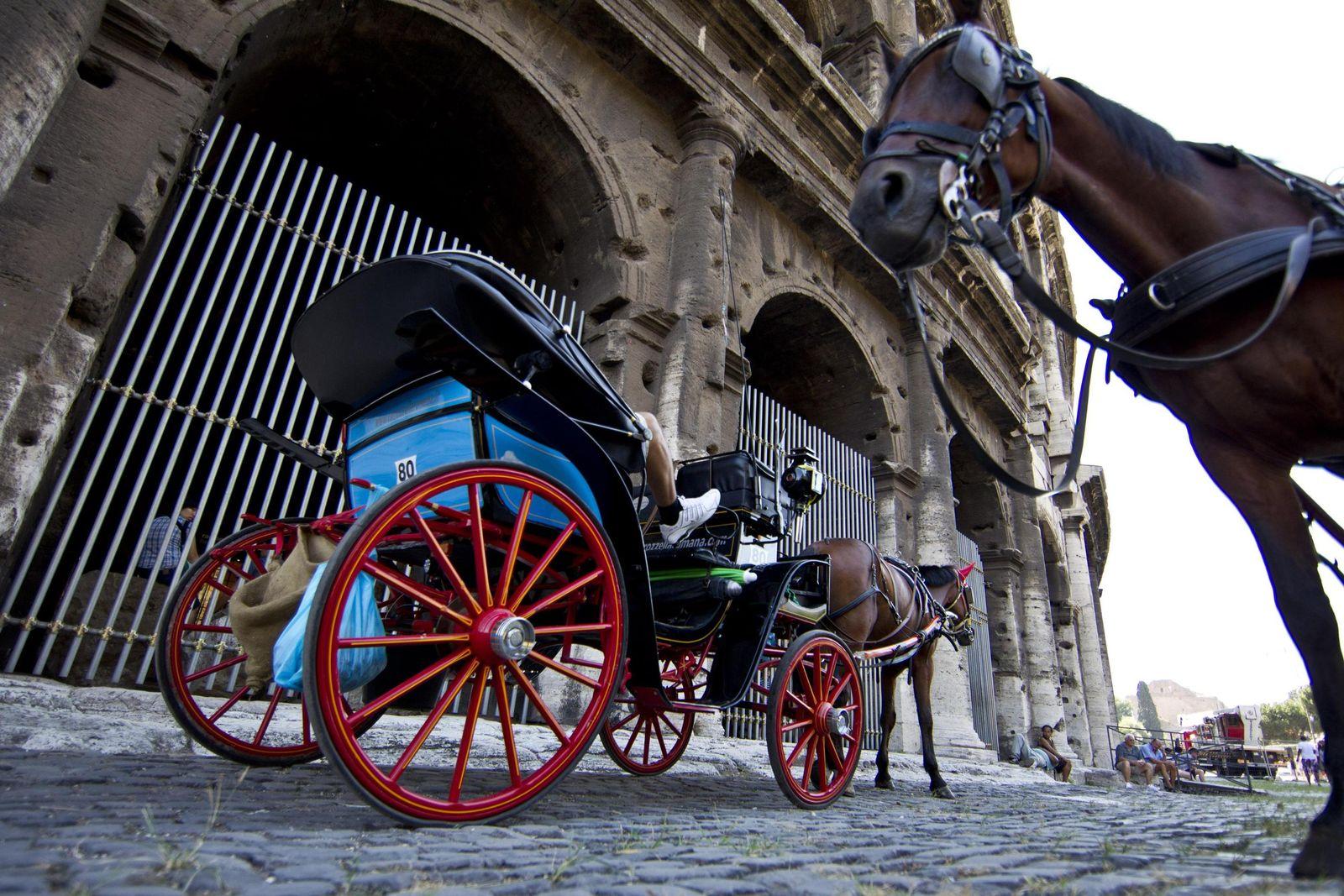 Pferdekutschen «Botticelle» in Rom