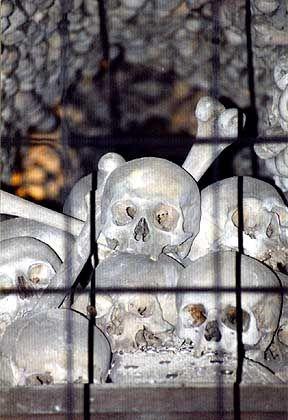 Knochenpyramide: Die Mehrheit der Knochen liegt hinter Drahtzäunen