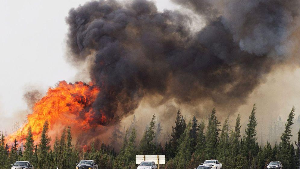 Waldbrände in Kanada: Öl im Feuer