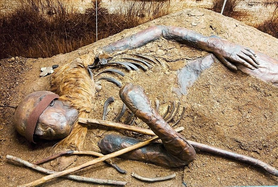 Dieser Mensch wurde vor rund 2000 Jahren in einem Moor in Schleswig-Holstein bestattet. An den meisten Orten hätten Insekten und Bakterien die Leiche längst vollständig zersetzt. Doch im wassergetränkten Moorboden fehlt solchen Lebewesen buchstäblich die Luft zum Atmen. Deshalb sind Moorleichen oft sehr gut erhalten.