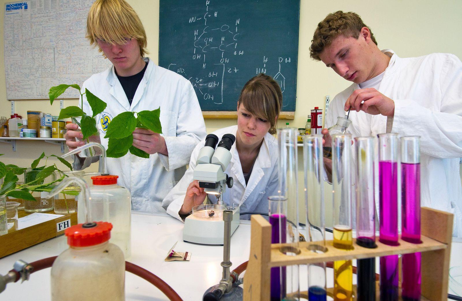 Unterricht / Schule / Biologie