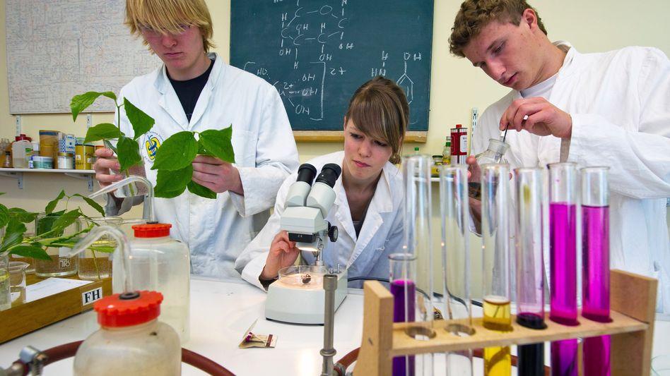 Schüler im Labor: Der Osten schneiden besser ab